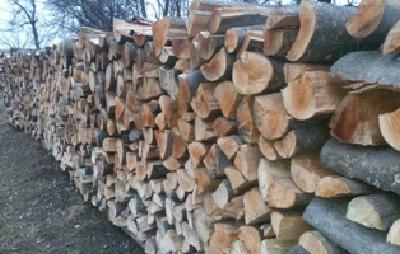 Drva za ogrjev Grab i Bukva