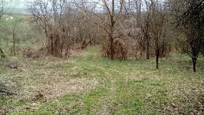 Poljoprivredno zemljište Cepeliš 2410m2